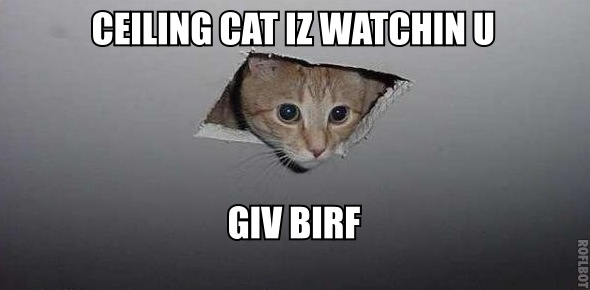 Ceiling cat is watching you give birth